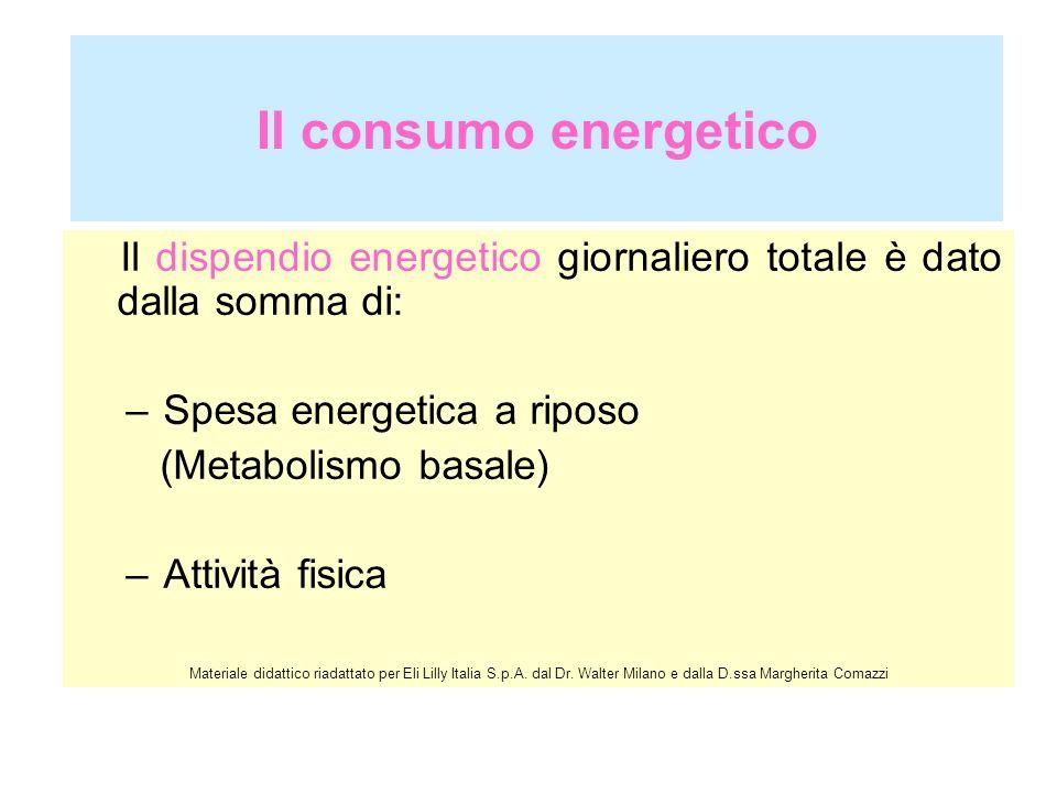 Il consumo energetico Il dispendio energetico giornaliero totale è dato dalla somma di: –Spesa energetica a riposo (Metabolismo basale) –Attività fisi