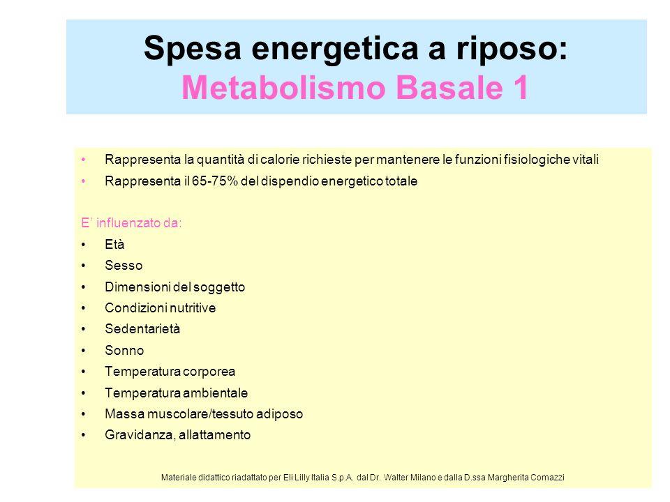 Metabolismo Basale 2 Età: raggiunge il massimo tra i 3/6 anni e diminuisce successivamente Sesso: nelluomo è più elevato di circa il 7% rispetto alla donna Dimensioni del soggetto: aumenta allaumentare della superficie corporea Condizioni nutritive: diminuisce in condizioni di iponutrizione (dopo un po le diete funzionano meno per cui occorre incrementare lattività fisica) Sedentarietà: si riduce nei soggetti sedentari Sonno: si abbassa del 6-13% Materiale didattico riadattato per Eli Lilly Italia S.p.A.