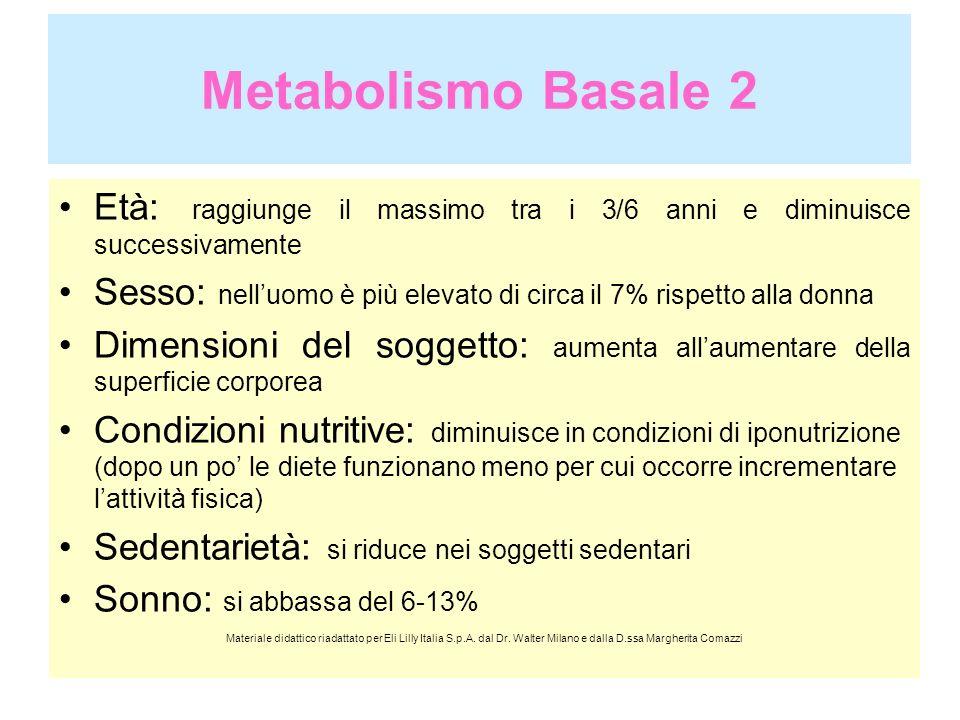 Metabolismo Basale 3 Temperatura corporea: negli stati febbrili aumenta del 13% per ogni grado superiore ai 37° Temperatura ambientale: oltre i 30° si verifica un leggero aumento necessario alla sudorazione, al di sotto dei 15°aumenta sensibilmente a causa della dispersione del calore dal corpo Massa muscolare/tessuto adiposo: la massa muscolare consuma di più Gravidanza, allattamento: dal quarto mese aumenta dell8% e arriva a un aumento del 14-33% negli ultimi due mesi.