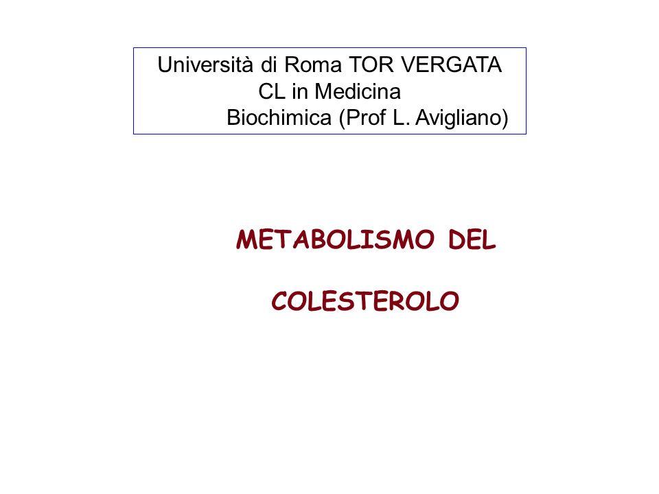 METABOLISMO DEL COLESTEROLO Università di Roma TOR VERGATA CL in Medicina Biochimica (Prof L.