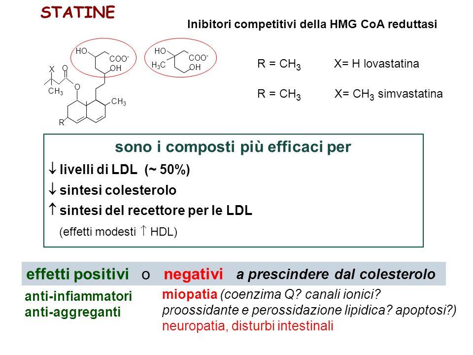 R HO CH 3 COO - OH O O CH 3 X HO COO - OH H3CH3C R = CH 3 X= H lovastatina R = CH 3 X= CH 3 simvastatina STATINE Inibitori competitivi della HMG CoA reduttasi sono i composti più efficaci per livelli di LDL (~ 50%) sintesi colesterolo sintesi del recettore per le LDL (effetti modesti HDL) anti-infiammatori anti-aggreganti miopatia (coenzima Q.