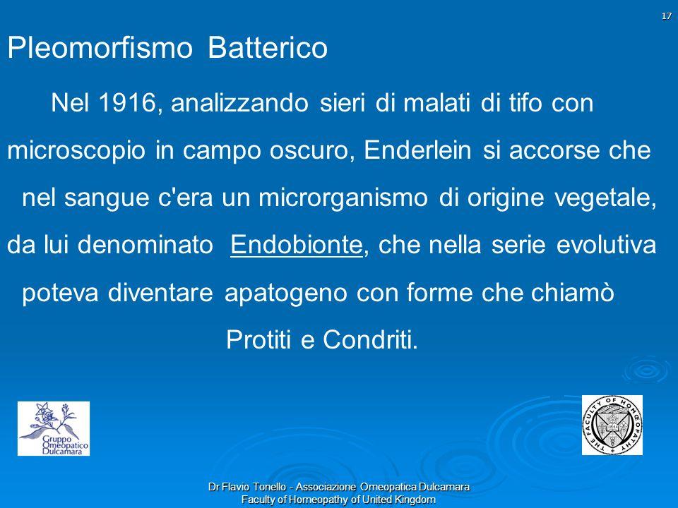 Dr Flavio Tonello - Associazione Omeopatica Dulcamara Faculty of Homeopathy of United Kingdom Pleomorfismo Batterico Nel 1916, analizzando sieri di ma