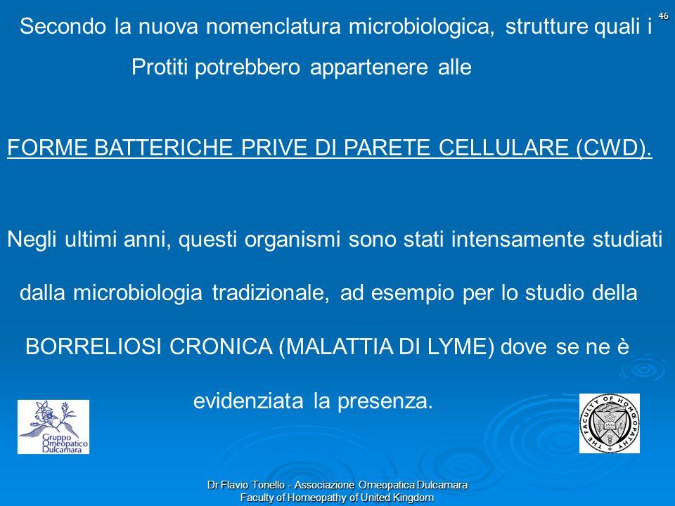 Dr Flavio Tonello - Associazione Omeopatica Dulcamara Faculty of Homeopathy of United Kingdom Secondo la nuova nomenclatura microbiologica, strutture