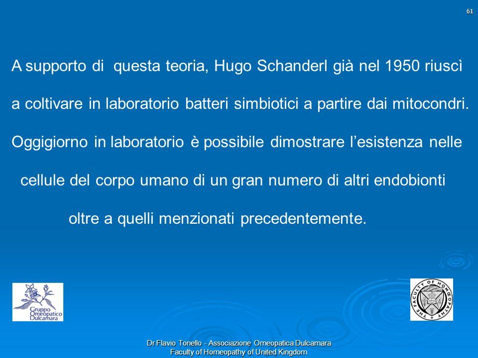 Dr Flavio Tonello - Associazione Omeopatica Dulcamara Faculty of Homeopathy of United Kingdom A supporto di questa teoria, Hugo Schanderl già nel 1950