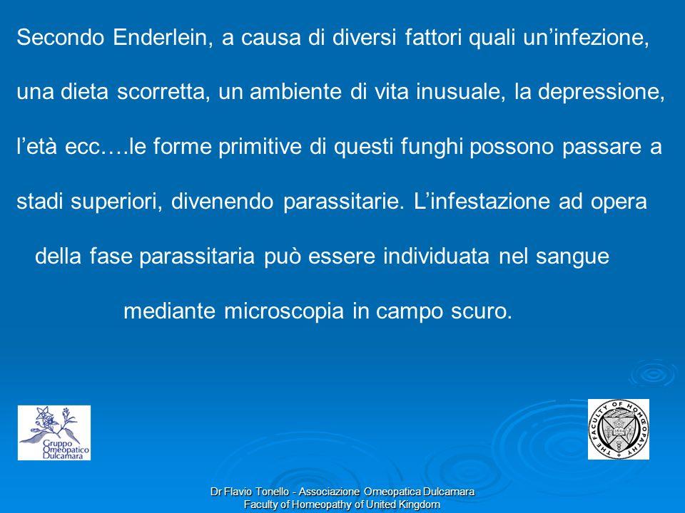 Dr Flavio Tonello - Associazione Omeopatica Dulcamara Faculty of Homeopathy of United Kingdom Secondo Enderlein, a causa di diversi fattori quali unin