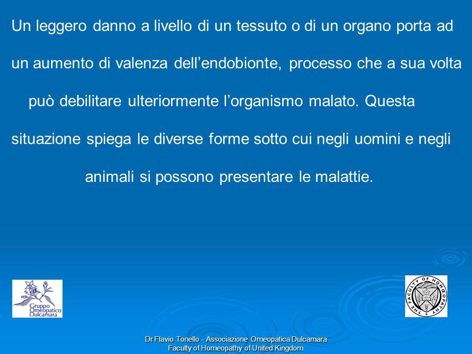 Dr Flavio Tonello - Associazione Omeopatica Dulcamara Faculty of Homeopathy of United Kingdom Un leggero danno a livello di un tessuto o di un organo