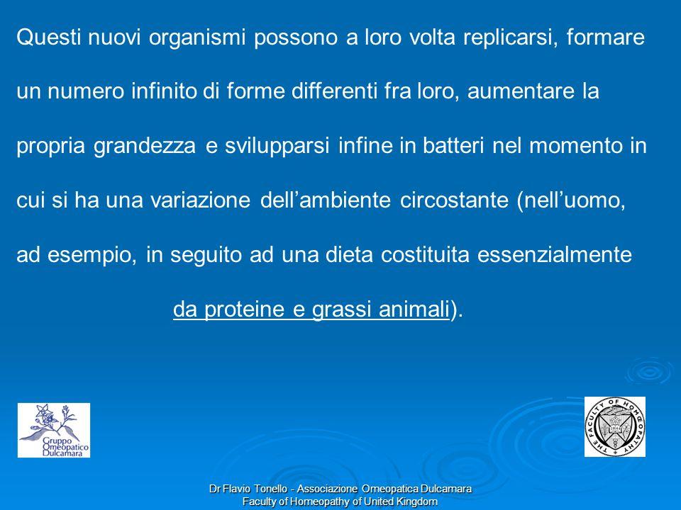 Dr Flavio Tonello - Associazione Omeopatica Dulcamara Faculty of Homeopathy of United Kingdom Questi nuovi organismi possono a loro volta replicarsi,