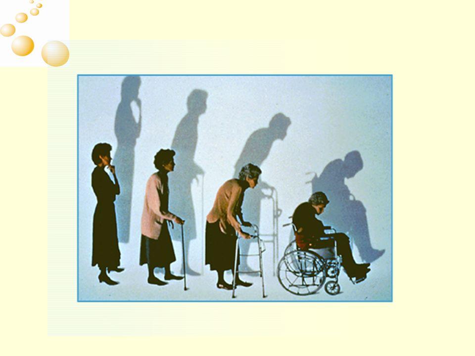 T Score -4-3 -2 -10 BMD e rischio di fratture Kanis et al 2001 Popolazione svedese Probabilità di fratture a 10 anni (%)