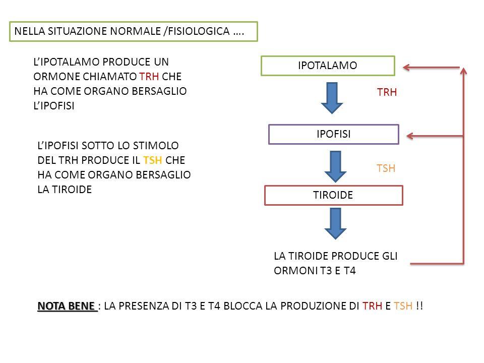 NELLA SITUAZIONE NORMALE /FISIOLOGICA …. LIPOTALAMO PRODUCE UN ORMONE CHIAMATO TRH CHE HA COME ORGANO BERSAGLIO LIPOFISI IPOTALAMO TRH IPOFISI LIPOFIS