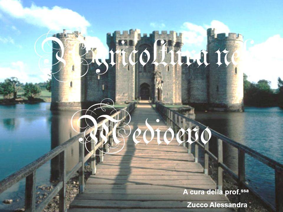 Agricoltura nel Medioevo A cura della prof. ssa Zucco Alessandra