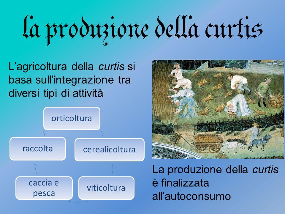 la produzione della curtis Lagricoltura della curtis si basa sullintegrazione tra diversi tipi di attività.