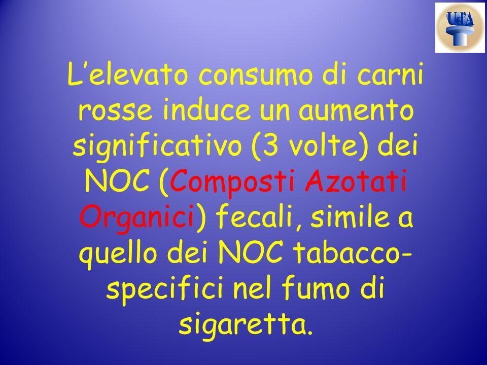 Lelevato consumo di carni rosse induce un aumento significativo (3 volte) dei NOC (Composti Azotati Organici) fecali, simile a quello dei NOC tabacco-