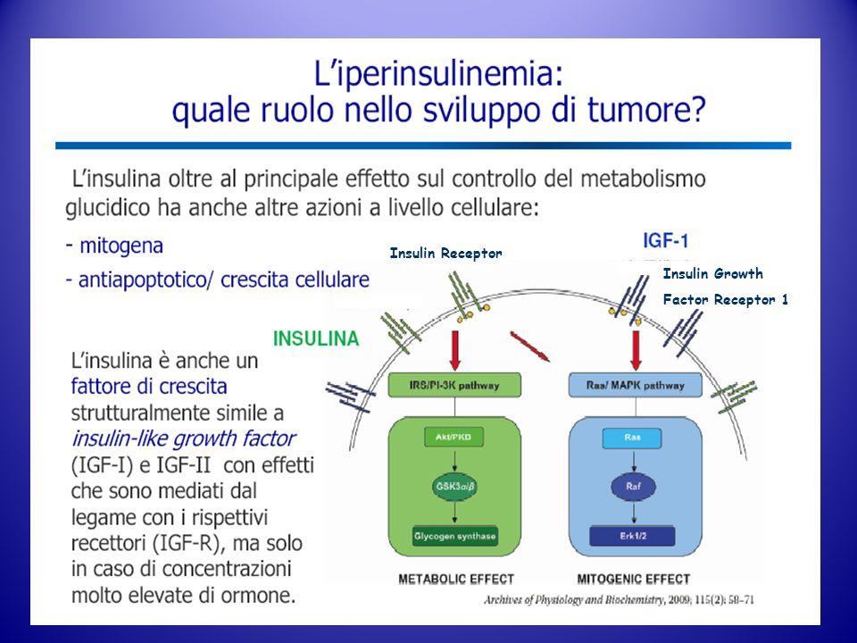 Insulin Receptor Insulin Growth Factor Receptor 1