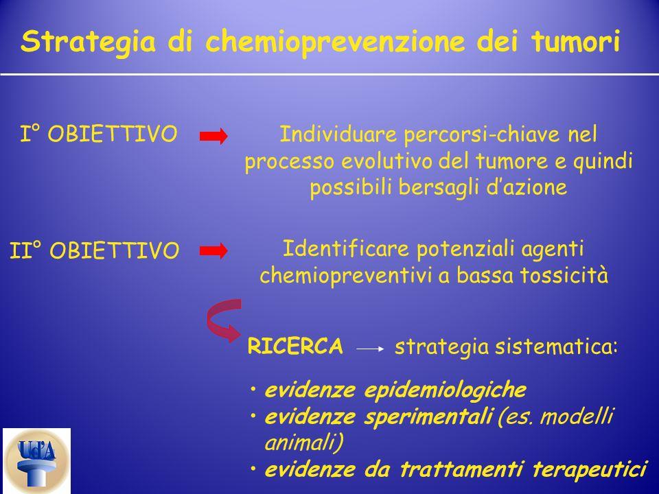 Strategia di chemioprevenzione dei tumori I° OBIETTIVOIndividuare percorsi-chiave nel processo evolutivo del tumore e quindi possibili bersagli dazion
