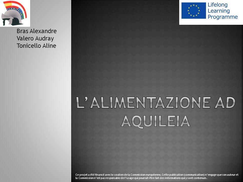 Bras Alexandre Valero Audray Tonicello Aline Ce projet a été financé avec le soutien de la Commission européenne.