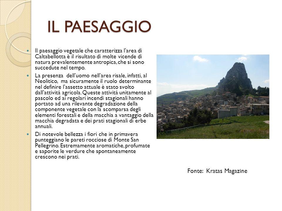 IL PAESAGGIO Il paesaggio vegetale che caratterizza larea di Caltabellotta è il risultato di molte vicende di natura prevalentemente antropica, che si