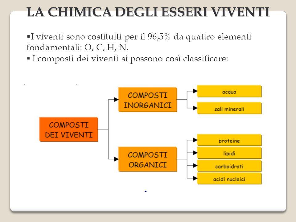 LA CHIMICA DEGLI ESSERI VIVENTI I viventi sono costituiti per il 96,5% da quattro elementi fondamentali: O, C, H, N. I composti dei viventi si possono