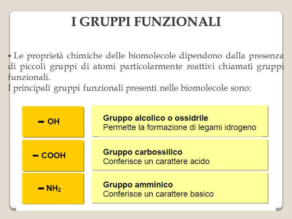I GRUPPI FUNZIONALI Le proprietà chimiche delle biomolecole dipendono dalla presenza di piccoli gruppi di atomi particolarmente reattivi chiamati gruppi funzionali.