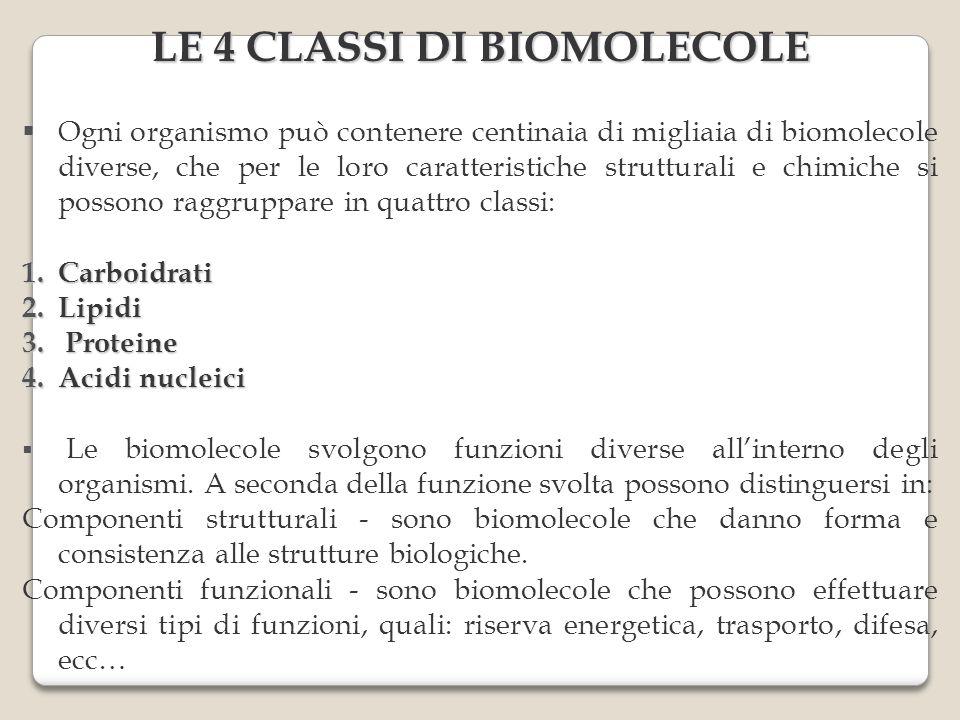 Ogni organismo può contenere centinaia di migliaia di biomolecole diverse, che per le loro caratteristiche strutturali e chimiche si possono raggruppare in quattro classi: 1.Carboidrati 2.Lipidi 3.