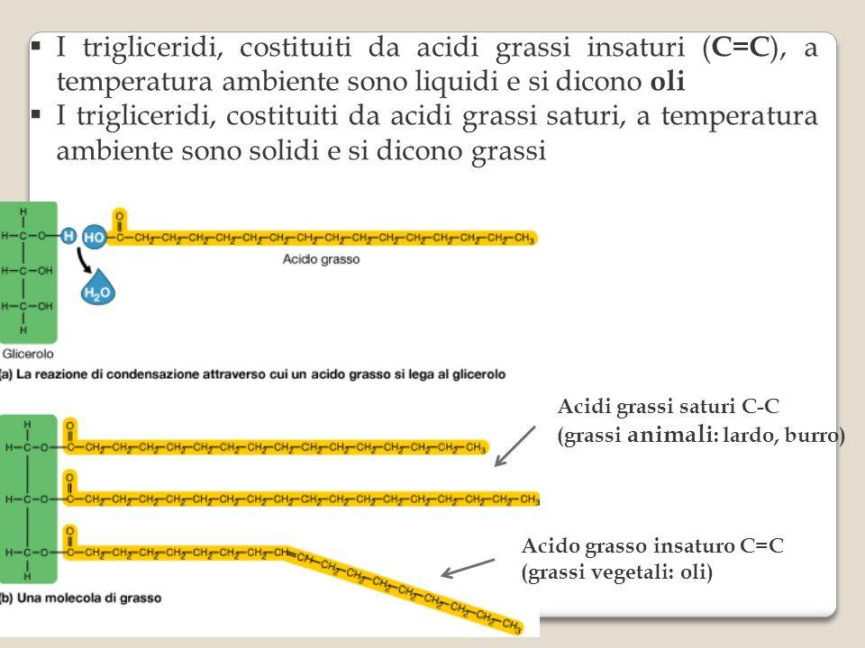 I trigliceridi, costituiti da acidi grassi insaturi ( C=C ), a temperatura ambiente sono liquidi e si dicono oli I trigliceridi, costituiti da acidi grassi saturi, a temperatura ambiente sono solidi e si dicono grassi Acidi grassi saturi C-C (grassi animali : lardo, burro) Acido grasso insaturo C=C (grassi vegetali: oli)