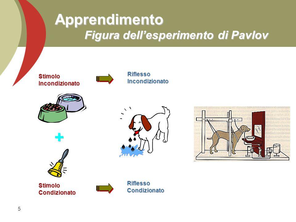 5 Apprendimento Figura dellesperimento di Pavlov StimoloIncondizionatoRiflessoIncondizionatoStimoloCondizionato RiflessoCondizionato