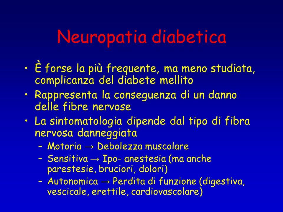Neuropatia diabetica È forse la più frequente, ma meno studiata, complicanza del diabete mellito Rappresenta la conseguenza di un danno delle fibre ne