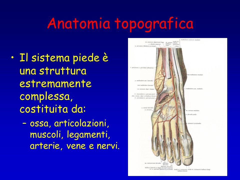 Anatomia topografica Il sistema piede è una struttura estremamente complessa, costituita da: –ossa, articolazioni, muscoli, legamenti, arterie, vene e