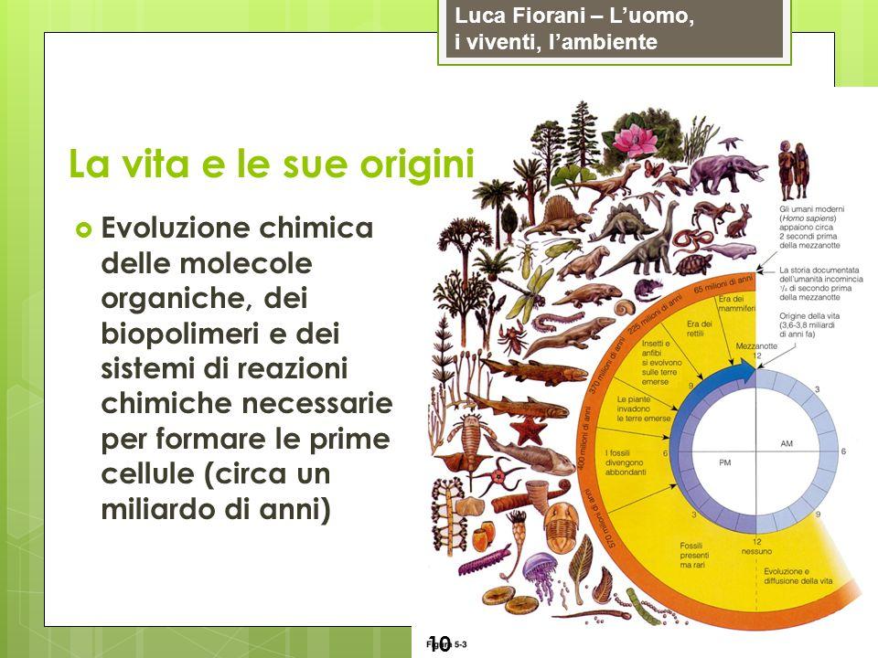 Luca Fiorani – Luomo, i viventi, lambiente La vita e le sue origini 10 Evoluzione chimica delle molecole organiche, dei biopolimeri e dei sistemi di r