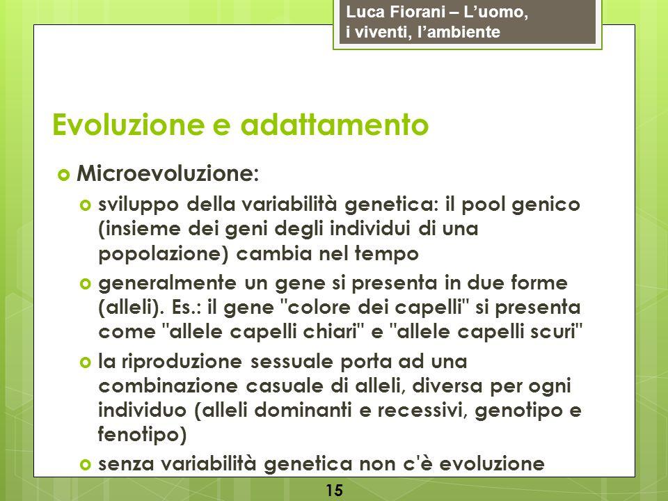 Luca Fiorani – Luomo, i viventi, lambiente Evoluzione e adattamento 15 Microevoluzione: sviluppo della variabilità genetica: il pool genico (insieme d