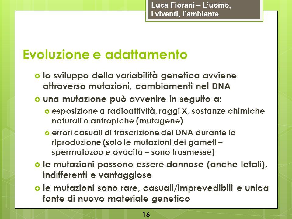 Luca Fiorani – Luomo, i viventi, lambiente Evoluzione e adattamento 16 lo sviluppo della variabilità genetica avviene attraverso mutazioni, cambiament