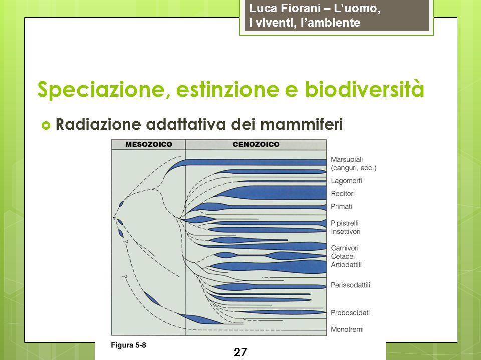 Luca Fiorani – Luomo, i viventi, lambiente Speciazione, estinzione e biodiversità 27 Radiazione adattativa dei mammiferi