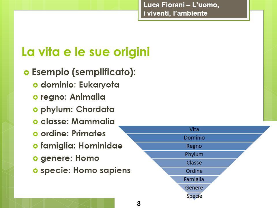 Luca Fiorani – Luomo, i viventi, lambiente La vita e le sue origini 4 Batteri: cianobatteri (fotosintesi) decompositori Streptococcus (polmonite) flora batterica