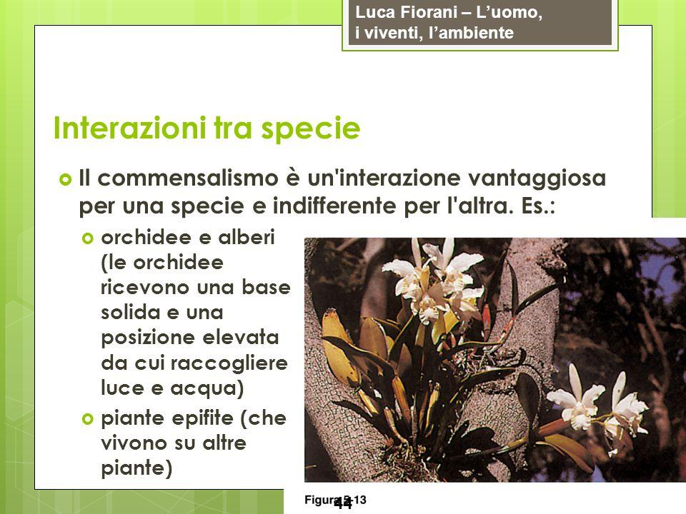 Luca Fiorani – Luomo, i viventi, lambiente Interazioni tra specie 44 Il commensalismo è un'interazione vantaggiosa per una specie e indifferente per l