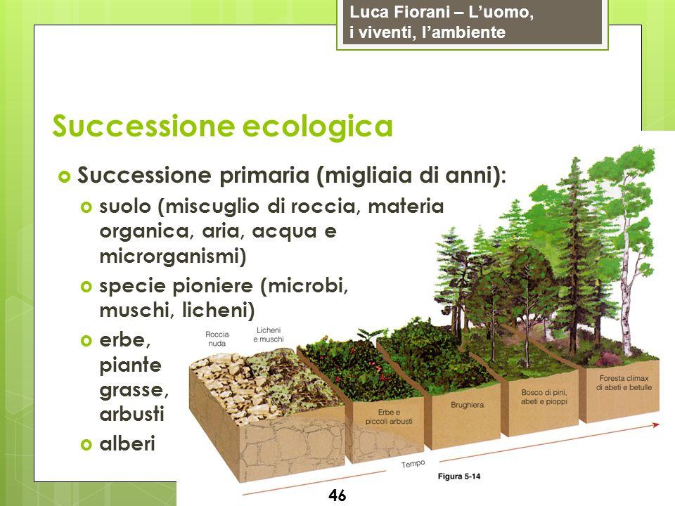Luca Fiorani – Luomo, i viventi, lambiente Successione ecologica 46 Successione primaria (migliaia di anni): suolo (miscuglio di roccia, materia organ