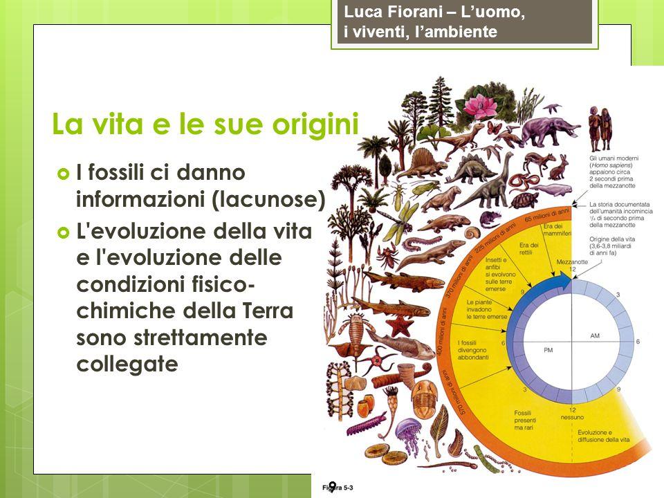 Luca Fiorani – Luomo, i viventi, lambiente La vita e le sue origini 9 I fossili ci danno informazioni (lacunose) L'evoluzione della vita e l'evoluzion