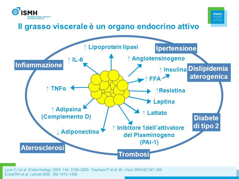 Adipose tissue IL-6 Adiponectina Leptina TNFα Adipsina (Complemento D) Inibitore 1dellattivatore del Plasminogeno (PAI-1) FFA Insulina Angiotensinogen