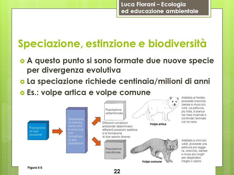Luca Fiorani – Ecologia ed educazione ambientale Speciazione, estinzione e biodiversità 22 A questo punto si sono formate due nuove specie per diverge