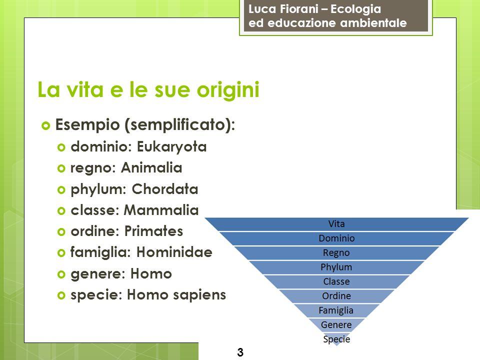 Luca Fiorani – Ecologia ed educazione ambientale La vita e le sue origini Esempio (semplificato): dominio: Eukaryota regno: Animalia phylum: Chordata