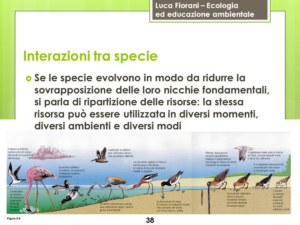 Luca Fiorani – Ecologia ed educazione ambientale Interazioni tra specie 38 Se le specie evolvono in modo da ridurre la sovrapposizione delle loro nicc