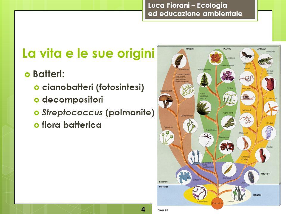 Luca Fiorani – Ecologia ed educazione ambientale La vita e le sue origini 5 Protisti: flagellati parameci diatomee (fotosintesi) alcune alghe detritivori e parassiti amebe (amebiasi) plasmodio (malaria) tripanosoma (malattia del sonno)