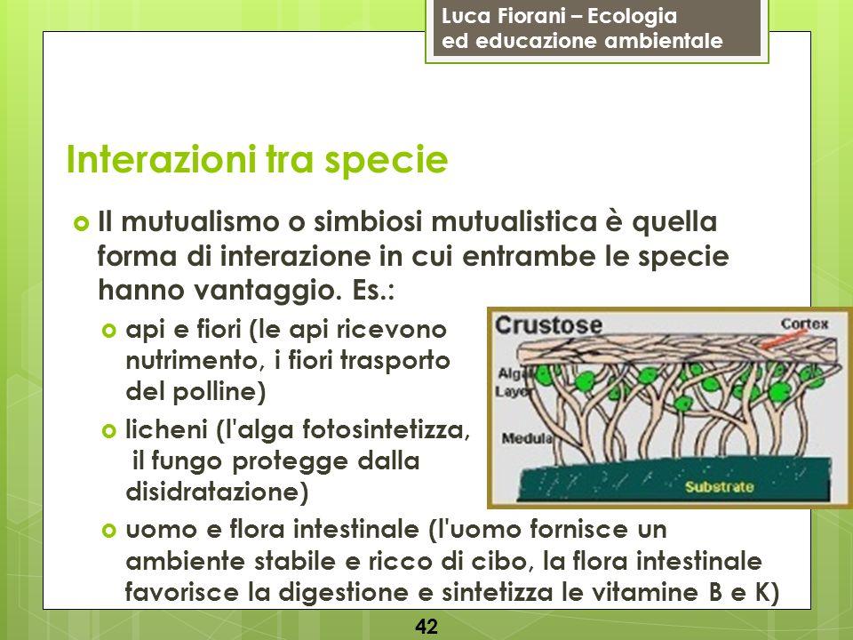 Luca Fiorani – Ecologia ed educazione ambientale Interazioni tra specie 42 Il mutualismo o simbiosi mutualistica è quella forma di interazione in cui