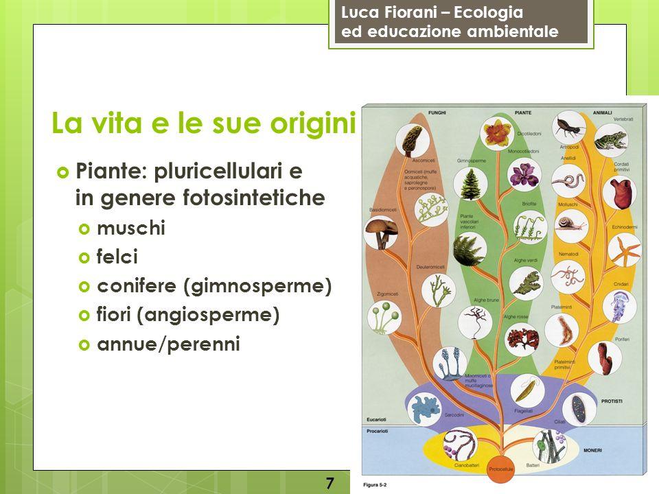 Luca Fiorani – Ecologia ed educazione ambientale La vita e le sue origini 8 Animali: pluricellulari e non fotosintetici vertebrati: mammiferi, uccelli, rettili, anfibi, pesci invertebrati: spugne, meduse, polipi, planarie, vermi, artropodi (insetti, millepiedi, gamberi, ragni), molluschi (lumache, vongole, polpi, calamari), echinodermi (ricci di mare e stelle marine)