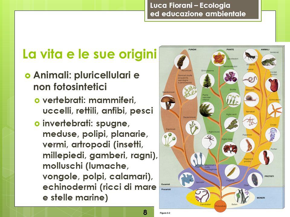 Luca Fiorani – Ecologia ed educazione ambientale La vita e le sue origini 8 Animali: pluricellulari e non fotosintetici vertebrati: mammiferi, uccelli
