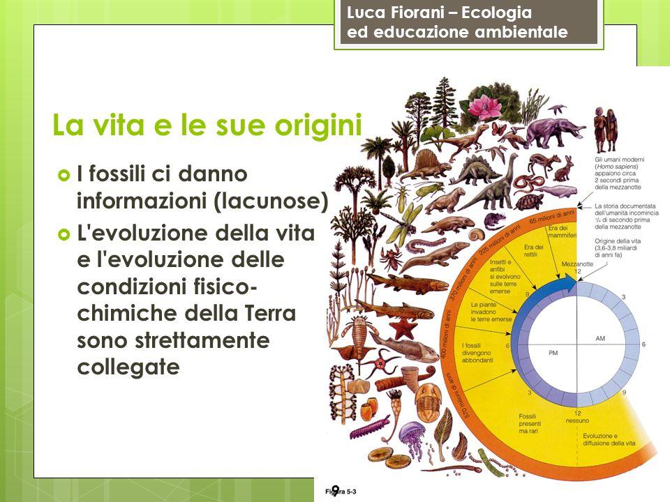 Luca Fiorani – Ecologia ed educazione ambientale La vita e le sue origini 9 I fossili ci danno informazioni (lacunose) L'evoluzione della vita e l'evo