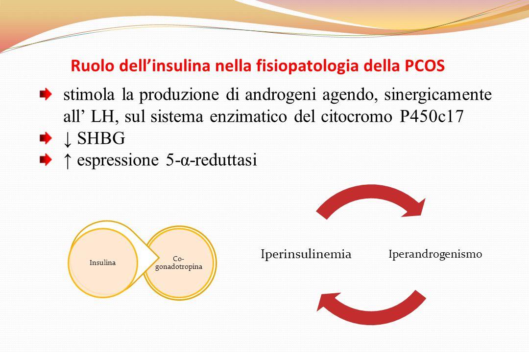 Ruolo dellinsulina nella fisiopatologia della PCOS stimola la produzione di androgeni agendo, sinergicamente all LH, sul sistema enzimatico del citocromo P450c17 SHBG espressione 5-α-reduttasi Iperandrogenismo Iperinsulinemia Co- gonadotropina Insulina