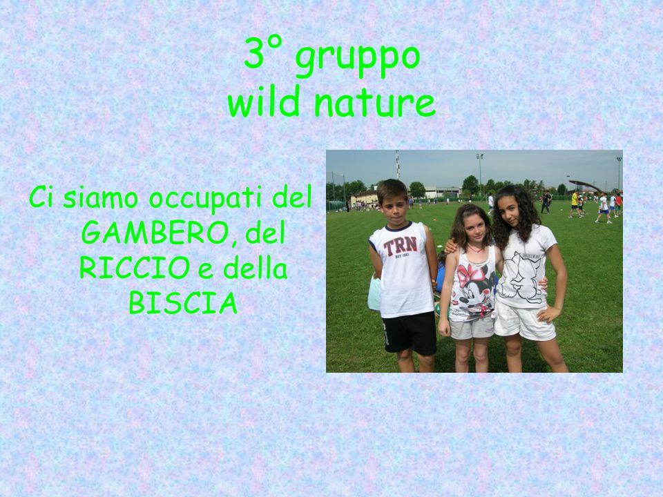 3° gruppo wild nature Ci siamo occupati del GAMBERO, del RICCIO e della BISCIA