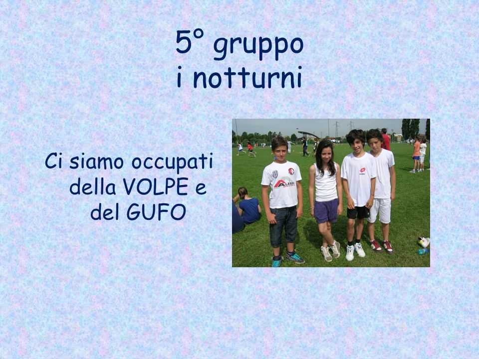 5° gruppo i notturni Ci siamo occupati della VOLPE e del GUFO