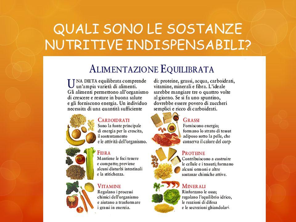QUALI SONO LE SOSTANZE NUTRITIVE INDISPENSABILI?