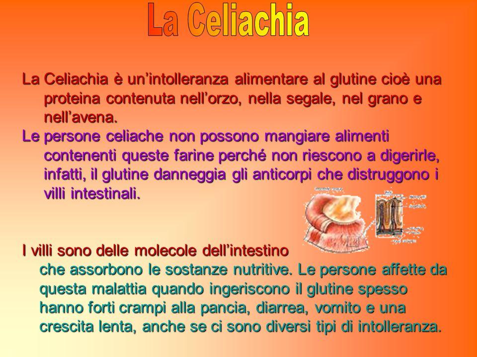 La Celiachia è unintolleranza alimentare al glutine cioè una proteina contenuta nellorzo, nella segale, nel grano e proteina contenuta nellorzo, nella segale, nel grano e nellavena.