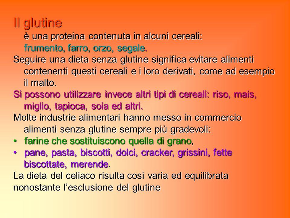 Il glutine è una proteina contenuta in alcuni cereali: frumento, farro, orzo, segale.